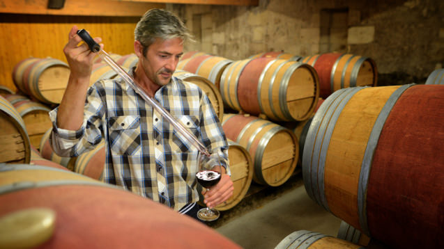 Выдержка вина дубовой бочке